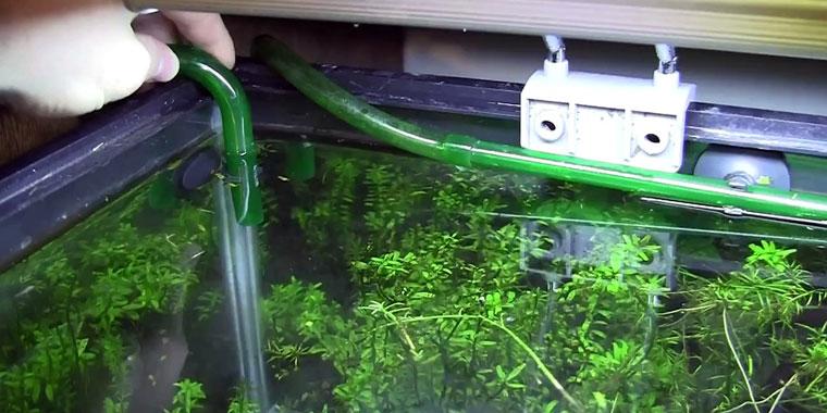 comparativa filtro de acuario externo